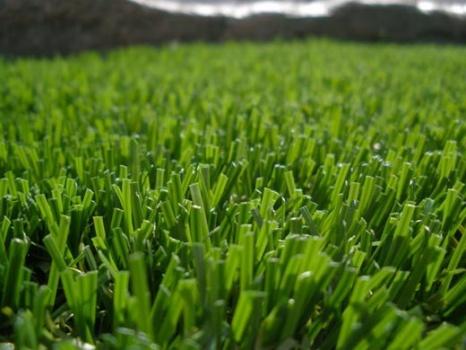 Jupiter Synthetic Turf Grass Installation