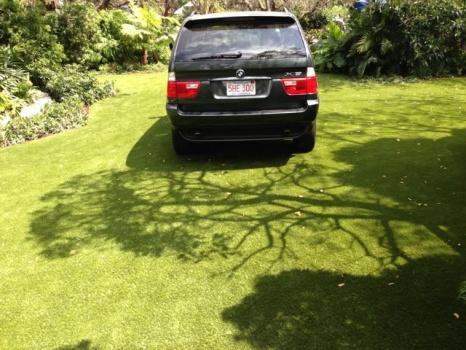driveway-grass-wrigley-3