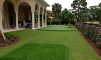 backyard chipping green