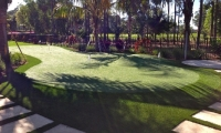 Old Palm Putting Green