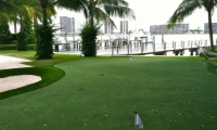 artificial green north palm beach