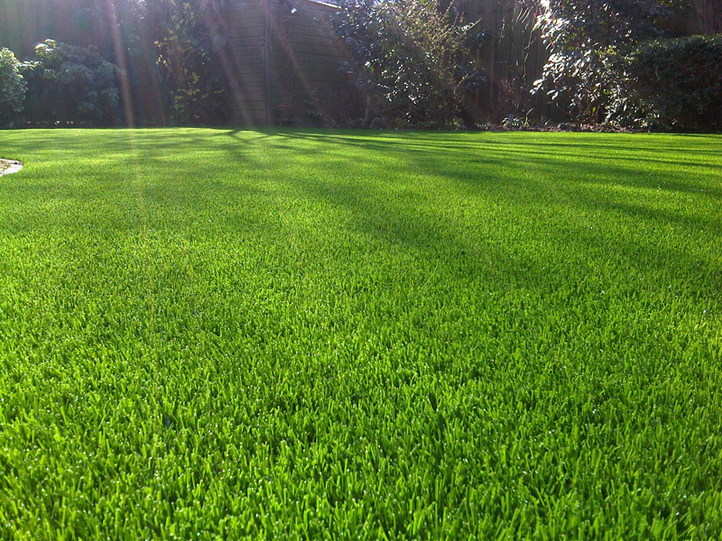 Who offers synthetic lawns in west palm beach?