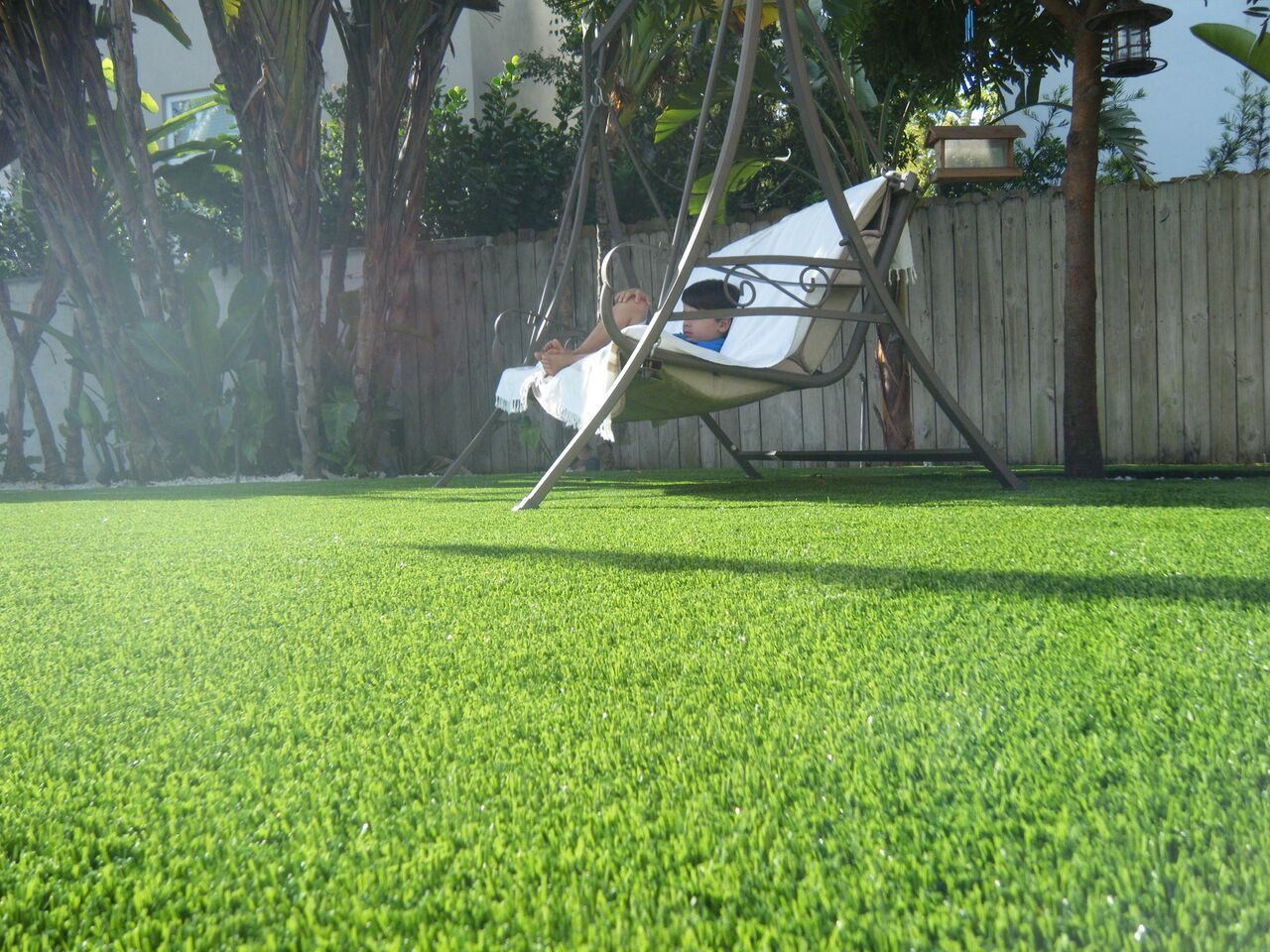 what are the benefits of low maintenance grass in florida