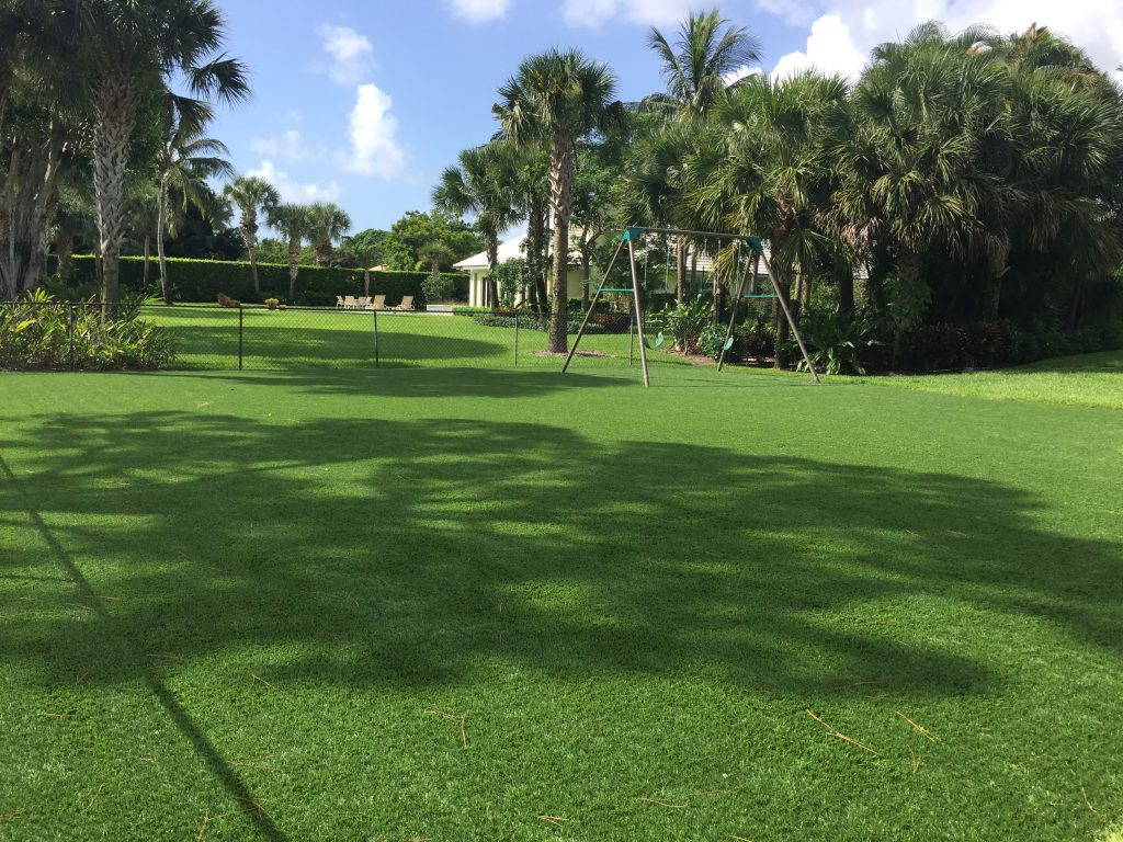 Field with Plastic Grass in Florida